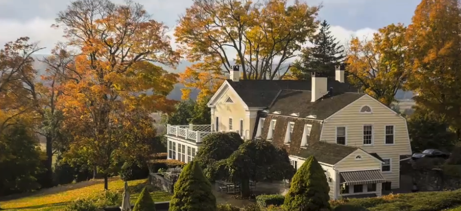 Leafy Mature Trees add Premium Value to Real Estate