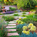 Courtesy Sunset Magazine - Water Wise Garden